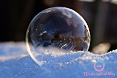 misterybubbles_00034