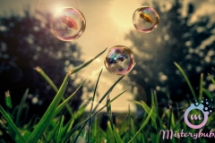 misterybubbles_00038