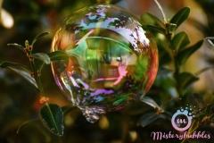 misterybubbles_00063