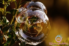 misterybubbles_00065