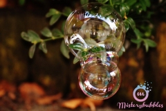 misterybubbles_00067