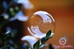 misterybubbles_00068