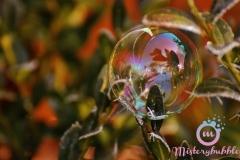 misterybubbles_00069