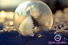 misterybubbles_00074