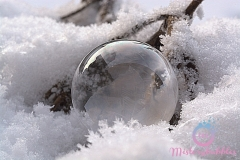 misterybubbles_00075