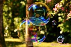 misterybubbles_00081