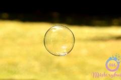misterybubbles_00084