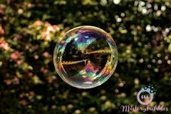 misterybubbles_00088