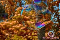 misterybubbles_00089