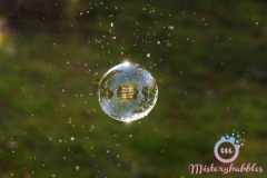 misterybubbles_00102