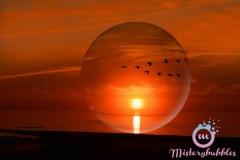 misterybubbles_00124